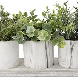 Pack of 3 Artificial Potted Plants Artificial Herb Assorted Plants in Marbling Pulp Pots Faux Pla... | Amazon (UK)