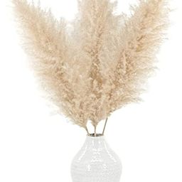 "Meadowlux Tall Dried Pampas Grass - Premium 3 Stems 48"", Fluffy Feathers for Vase, Modern Farmhou... | Amazon (US)"
