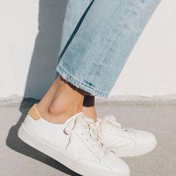 Ibiza Classic Leather Sneaker | Soludos