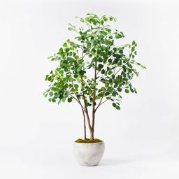 """72"""" Artificial Ficus Tree - Threshold™ designed with Studio McGee   Target"""