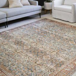 Cassian Persian Inspired Ocean/Rust Area Rug | Wayfair North America