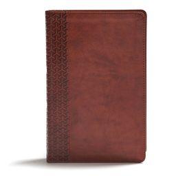 CSB Everyday Study Bible, British Tan Leathertouch (Hardcover)   Walmart (US)