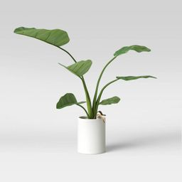 """36"""" x 26"""" Artificial Travelers Banana Leaf in Pot - Project 62™   Target"""