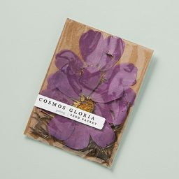 Blossom Seed Packet | Anthropologie (US)