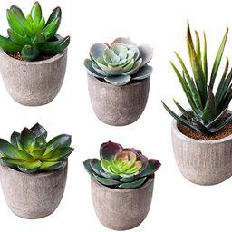 MoonLa Artificial Succulent Plants, Assorted Decorative Faux Succulent Potted Fake Cactus Cacti P...   Amazon (US)