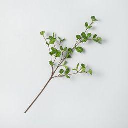 Faux Hazel Leaf Stem - Hearth & Hand™ with Magnolia   Target