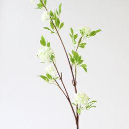 "Cream White Fake Viburnum Wildflower Branch - 46"" | Afloral (US)"