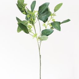 """Artificial Seeded Eucalyptus Spray in Green Burgundy - 19"""" Tall 