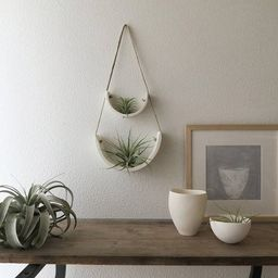Tiered White Earthenware Hanging Tillandsia Air Plant Holder   Etsy   Etsy (US)
