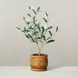 """16"""" Faux Olive Leaf Potted Plant - Hearth & Hand™ with Magnolia   Target"""