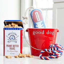 Harry Barker Americana Pet Bundle | Pottery Barn (US)