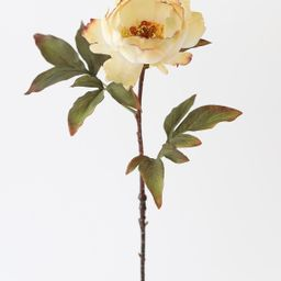 "Vanilla Ivory Fake Peony Fall Flower - 22""   Afloral (US)"
