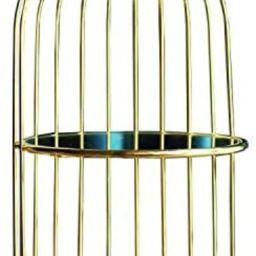 Mirrorred Glass Birdcage Bathroom Accessories Countertop/Vanity Perfume Tray, Double Jewelry Tray...   Amazon (US)