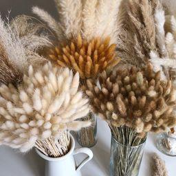 BUNNY TAILS 50 pcs - Natural Dried Lagurus Pampas Grass Boho Wedding Decor Bridal Bouquet Bohemia...   Etsy (US)