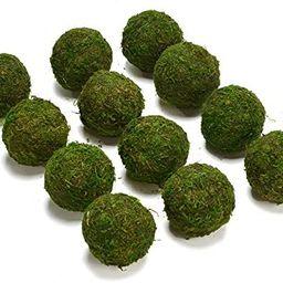 "Byher Natural Green Moss Decorative Ball,Handmade (2""-Set of 12) | Amazon (US)"