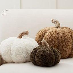 Cozy Pumpkin Pillows | Pottery Barn (US)