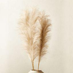 "Faux Pampas Grass Taupe Stem 39"" Set of 3 + Reviews | CB2 | CB2"