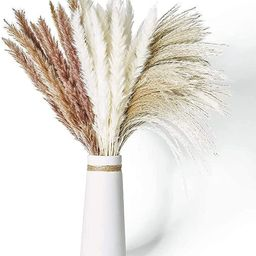 """Dried Pampas Grass, 60 Pcs Natural Pampas Grass with 3 Colors Fluffy Swinging DIY Boho Plant 17"""" ... 
