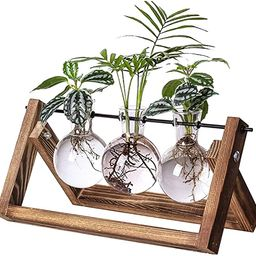 Kingbuy Desk Accessories Glass Planter Bulb Vase with Retro Solid Wooden Stand and Metal Swivel H... | Amazon (US)