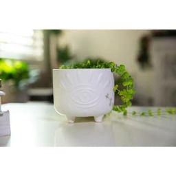 Flora Bunda 6 in. and 4.75 in. Matte White Evil Eye Ceramic Plant Pot with Legs (Set of 2)-CT1423...   The Home Depot