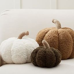 Cozy Pumpkin Pillows   Pottery Barn (US)
