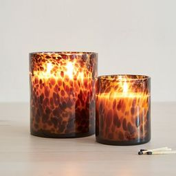 Tortoise Glass Candles - Vetiver Oud   West Elm (US)