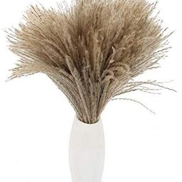 HUAESIN Dried Pampas Grass 100pcs 17 Inch Tall Reed Grass Plume Natural Bobo Pampas Grass Stems P... | Amazon (US)