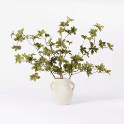 "5.5"" x 3"" Artificial Branch Plant Arrangement in Ceramic Pot - Threshold™ designed ...   Target"