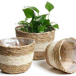 Amazon.com: POTEY 740102 Seagrass Planter Basket - Set of 3 Hand Woven Basket Indoor Outdoor Stor...   Amazon (US)