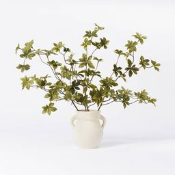 "5.5"" x 3"" Artificial Branch Plant Arrangement in Ceramic Pot - Threshold™ designed with Studio ... | Target"