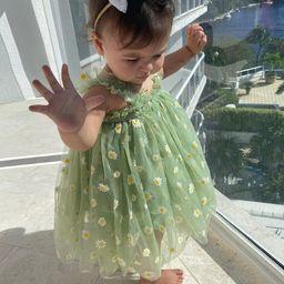 Baby Tulle Dress , Green Tulle Dress , daisy dress, Princess dress, Flower Girl Dress, first birt... | Etsy (US)