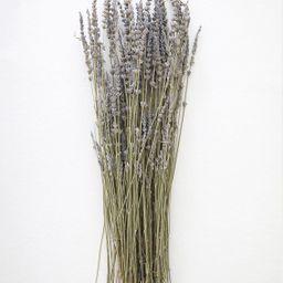 "Natural Dried Lavender Wildflower Bundle - 15-22"" Tall | Afloral (US)"