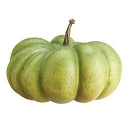 Faux Pumpkins, Green - Medium | Pottery Barn (US)