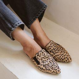 Cheetah Pony Hair Mule - Cheetah | Jenni Kayne | Jenni Kayne