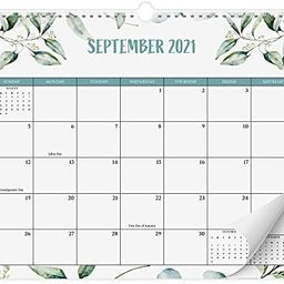 Aesthetic Greenery Wall Calendar - The Perfect Monthly Calendar for Easy Planning - Runs from Jun... | Amazon (US)