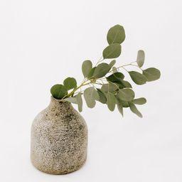 Myrna Terracotta Vase   THELIFESTYLEDCO
