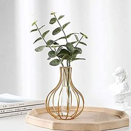 Gold Geometric Metal Frame Clear Glass Tube Flower Bud Vase | Bulb-Shaped Design and Handcrafted ... | Amazon (US)