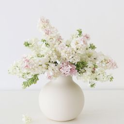 """Creamy White Round Ceramic Vase - 8"""" Tall x 8"""" Wide   Afloral (US)"""