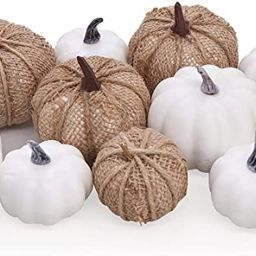 Bunny Chorus Artificial White Pumpkins and Burlap Pumpkins 12 Pcs in Different Sizes, for Fall Th... | Amazon (US)