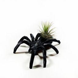 Black Spider Air Plant Display Desk Halloween Planter Drop   Etsy   Etsy (US)