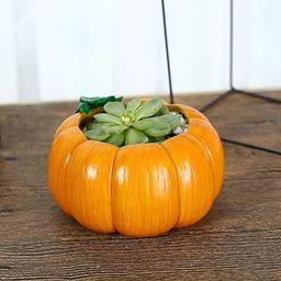 MoYek Creative Pumpkin Shaped Resin Flower Pots Succulent Planters Vase Home Office Art Pots Stan... | Amazon (US)