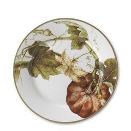 Botanical Pumpkin Salad Plates, Set of 4 | Williams-Sonoma