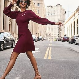 Eyelet Lace Fit And Flare Sweater Dress | Express