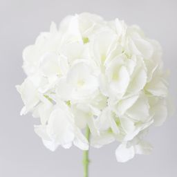 """Oversized Artificial Cream White Hydrangea - 9"""" Bloom 