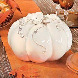 Fun Express White Ceramic Pumpkin with Vine Accents (10 inch Diameter) Fall Home Decor | Amazon (US)