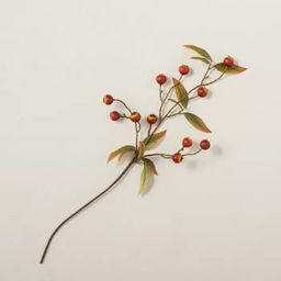 """25"""" Faux Pomegranate Plant Stem - Hearth & Hand™ with Magnolia   Target"""