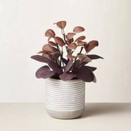 """7.75"""" Mini Faux Maroon Potted Plant - Hearth & Hand™ with Magnolia 