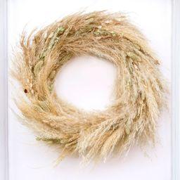 "Pampas Grass Wreath - 18""W | Pottery Barn (US)"