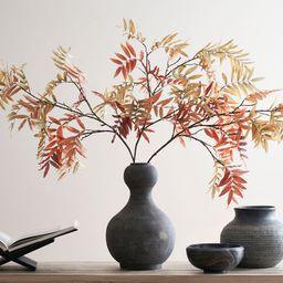 Faux Autumn Sumac Branch | Pottery Barn (US)