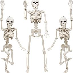"Skeleton Halloween Decoration, 3 Packs 16"" Posable Halloween Skeletons, Full Body Posable Joints ...   Amazon (US)"